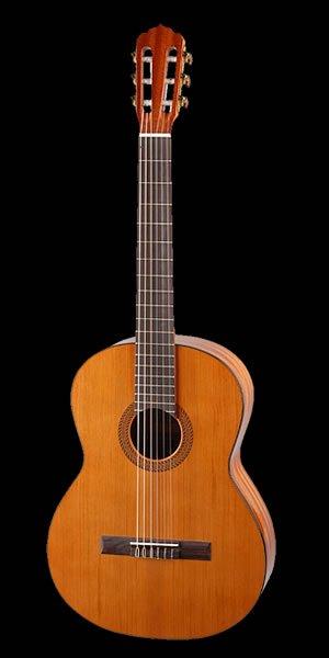 sapelli mahagoni gitarrendecke